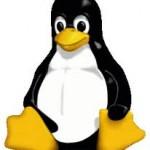 自分用に厳選したDebian/Linuxの備忘録