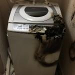 一人暮らしの洗濯機選びも二回目なら少しは賢くしたい