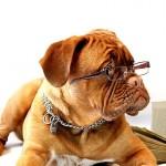 網膜剥離の経験者が人生の中で一番視力を回復した方法