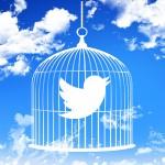 TwitterがDMの文字数制限解除で将来はツイートも?