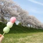 花見団子のレシピとカロリーを抑える方法